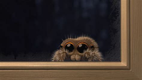 The Adorable Lucas the Spider Is Cold and Wants to Come