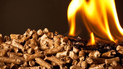 China to boost wood biomass consumption in a move to