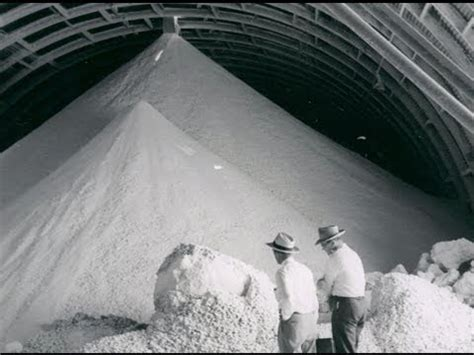 History of the West Mine and Intrepid Potash at Carlsbad